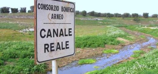 canale_reale_arneo